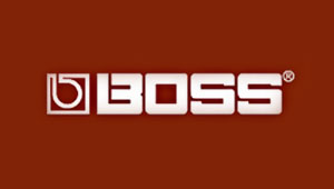 Effects pedals by Roland/BOSS US