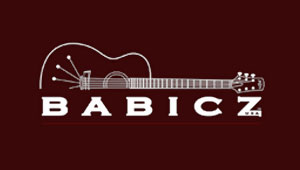 Acoustic guitars by Babicz Guitars